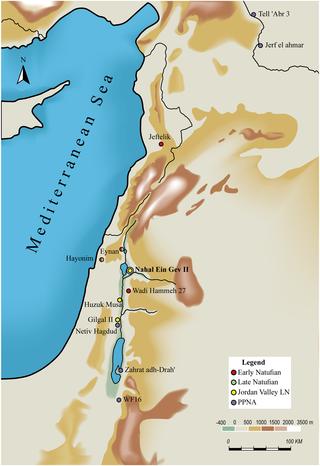 Localización del antiguo asentamiento de Nahal Ein Gev II (NEG II), situado al sur del Próximo Oriente y cuya antigüedad es de unos 12.000 años. (Grosman et al.)