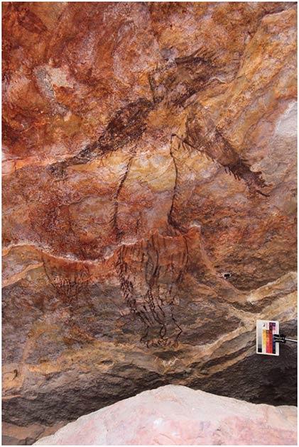 Otro ejemplo de arte rupestre de Maliwawa se descubrió en el sitio de Awunbarna que muestra a un humano indeterminado de Maliwawa con líneas que sugieren la presencia de cabello en todo el cuerpo. (P. Taçon / Arqueología australiana)