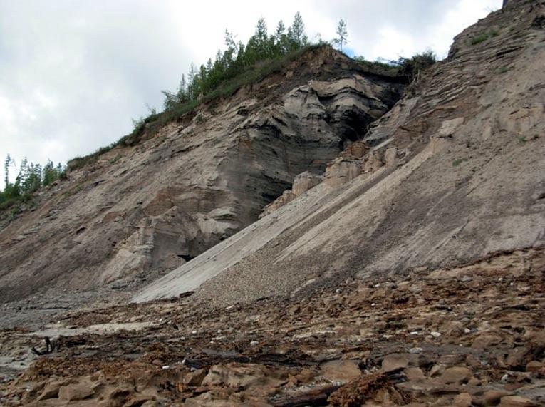 La bacteria fue descubierta originalmente en Mamontova Gora – la Montaña del Mamut – en la república siberiana de Sajá, también conocida como Yakutia, en el año 2009. Foto: Sergei Goltsov