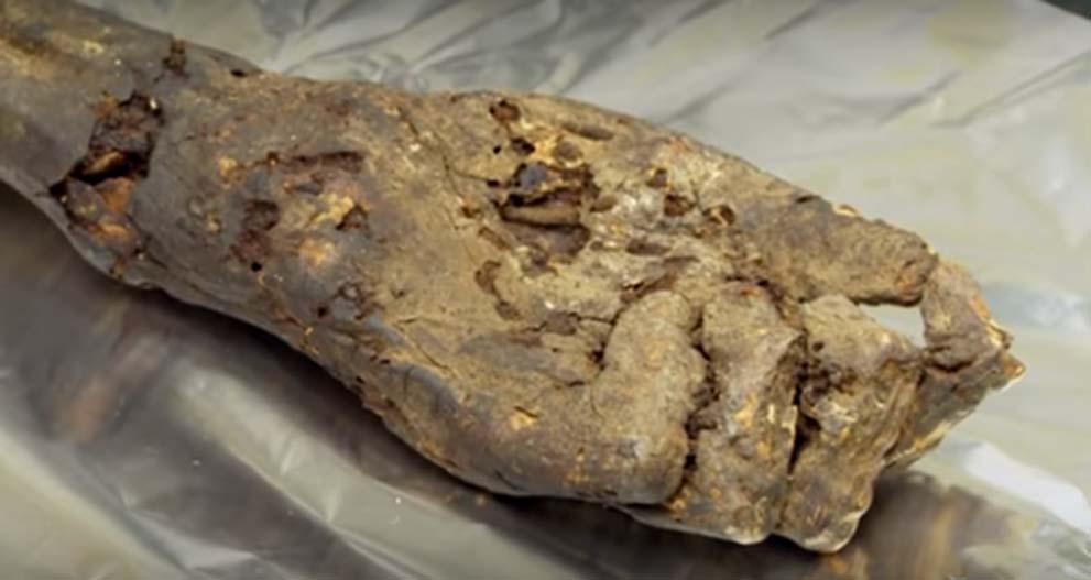 Mano momificada (circa 1000 a. C.) utilizada para obtener antiguo ADN egipcio (Youtube)