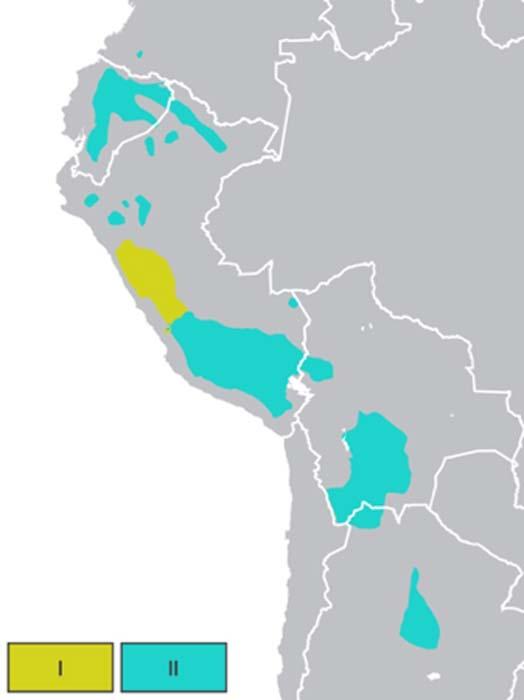 Quechua en toda la Cordillera de los Andes. Mapa que muestra la distribución de los idiomas quechua I, amarillo y quechua II, turquesa. (Huhsunqu / CC BY-SA 4.0)