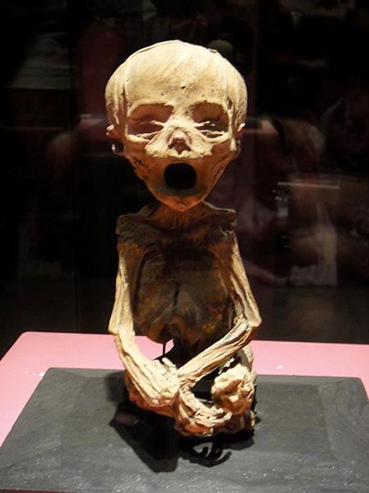 Momia de un bebé. Museo de las Momias de Guanajuato. (CC BY SA 4.0)