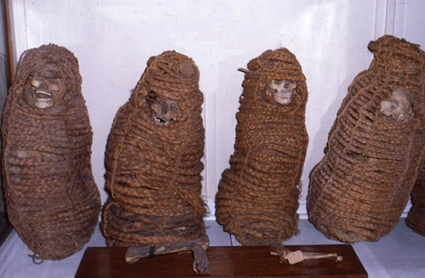 Estas momias se preparaban tratándolas con humo y a continuación envolviéndolas e introduciéndolas en canastos. Estos canastos, que permitían que el rostro del difunto quedara a la vista, se colgaban a continuación en tumbas familiares. El clima seco y frío de los Andes ha conservado los restos. Fotografía: Gino Fornaciari. Cortesía de Maria Gloria Roselli/Museo de Antropología y Etnología de la Universidad de Florencia