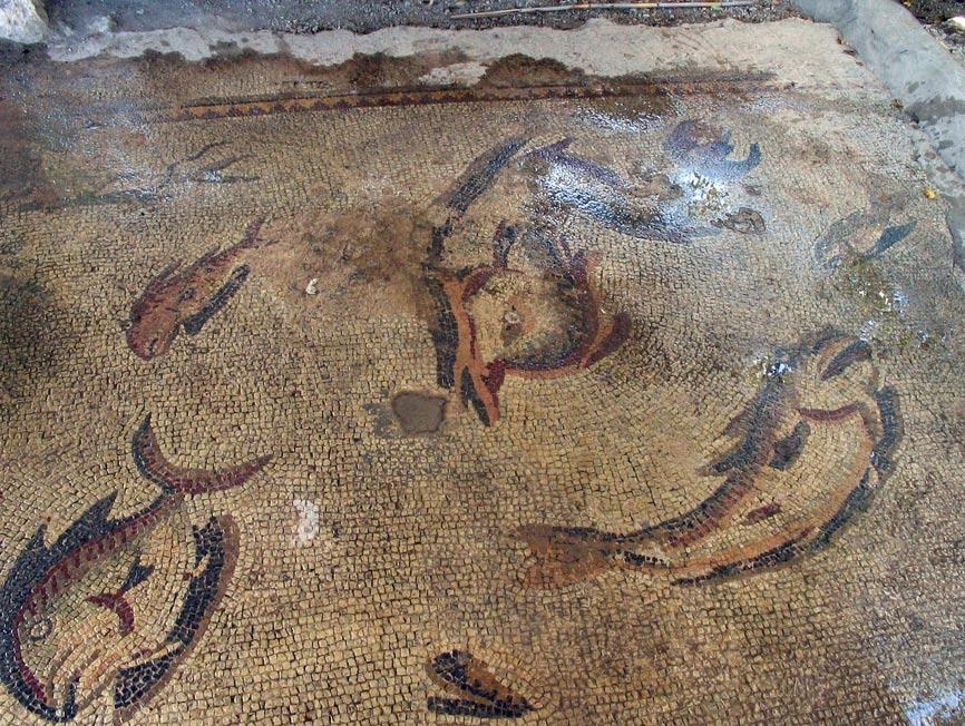 Mosaico con peces de la antigua ciudad de Anazarbus (Foto: Klaus-Peter Simon/Wikimedia Commons)