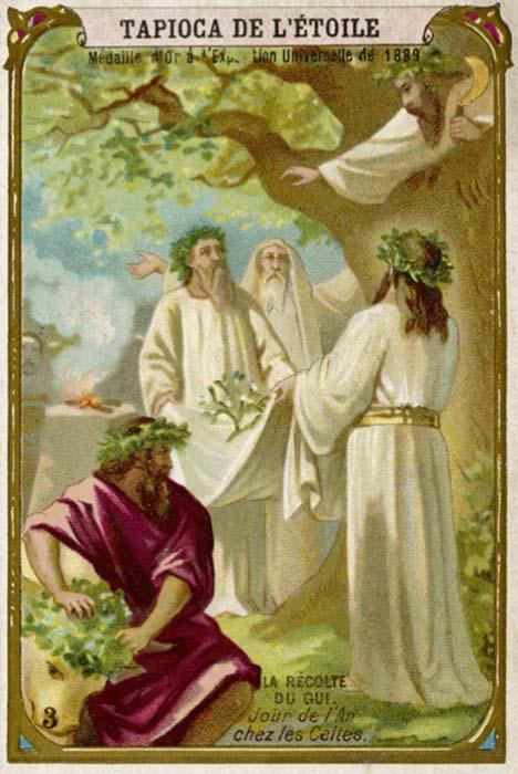 El muérdago fue venerado como un símbolo de fertilidad por los druidas celtas. Crédito: Archivero / Adobe Stock