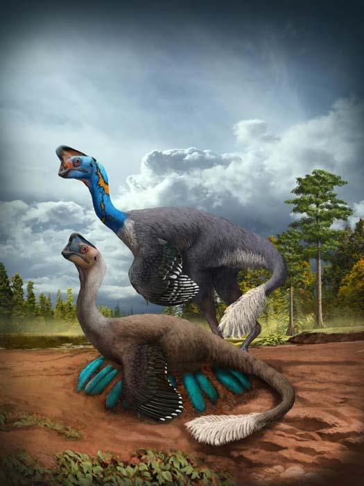 Un atento dinosaurio terópodo oviraptórido incuba su nido de huevos azul verdosos mientras su compañero observa en lo que hoy es la provincia de Jiangxi, en el sur de China, hace unos 70 millones de años. (Zhao Chuang)