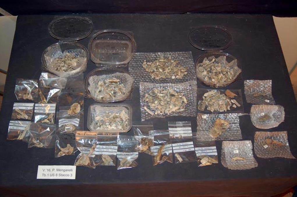 Diversos restos hallados en la tumba. (Tuscia Web)