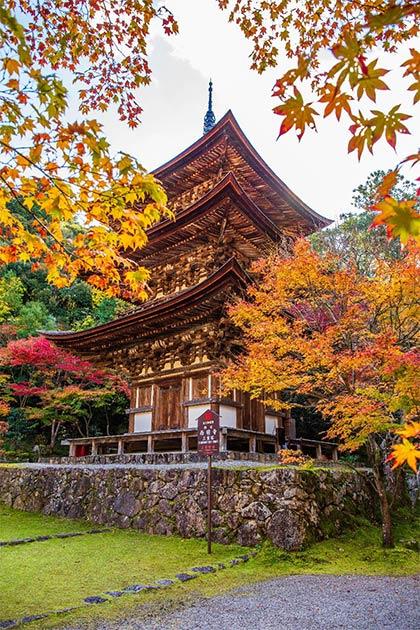 Pagoda del templo de Saimyoji. (Yuta1127 / Adobe Stock)
