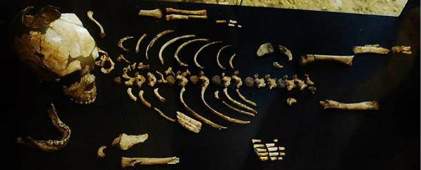 skeleton-of-a-Neanderthal-child.jpg