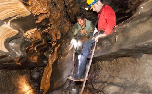 Cueva de los Tayos, Ecuador