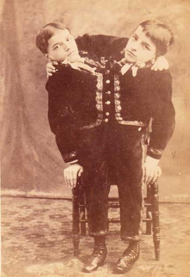 Fotografía de tarjeta del gabinete de 1880 de los hermanos Tocci de Obermiller & Kern. Fue vendido por los hermanos Tocci. ( Dominio público )
