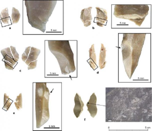 Réplicas experimentales rotas de piezas con respaldo de Uluzzian. (Ecología y evolución de la naturaleza)