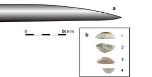 Punta de una lanza de Schöningen (a) y piezas representativas de respaldo de Uluzzian, utilizadas por humanos modernos, de Grotta del Cavallo (b). (Ecología y evolución de la naturaleza)