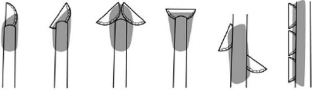 Posibles modos de acarreo de piezas con respaldo de Uluzzian basadas en la distribución de residuos. (Ecología y evolución de la naturaleza)