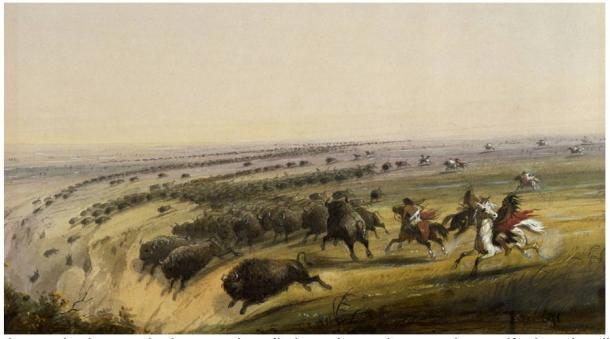 Búfalos siendo ahuyentados hacia un despeñadero, observado y pintado por Alfred Jacob Miller a finales del siglo XIX.
