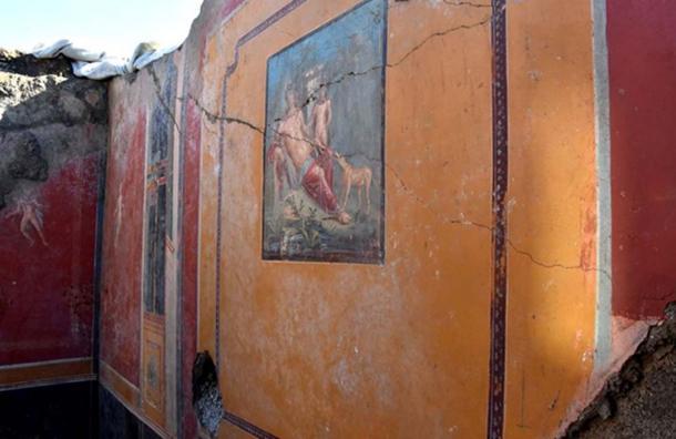 El retrato de Narciso ahora está casi completo y parece que solo se pintó en los últimos años debido a sus colores vivos. (Pompeii- Parco Archeologico)