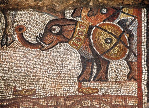 """Un mosaico de elefantes """"caricaturescos"""", Huqoq, región de Galilea, Israel."""
