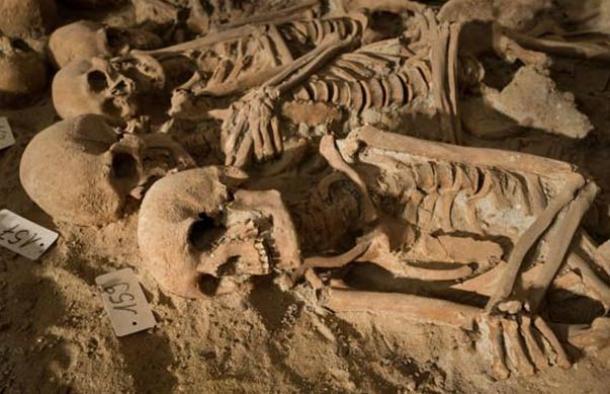 Esqueletos-Paris.jpg