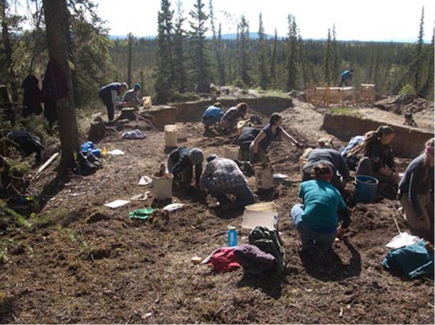 Trabajo de excavación en el sitio Mead en Alaska donde colgantes de 12,300 años de antigüedad han sido hallados.