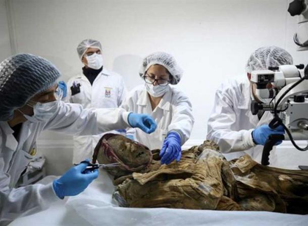 Los restos de la momia de guano serán sometidos a una serie de pruebas. (elciudadano.com)
