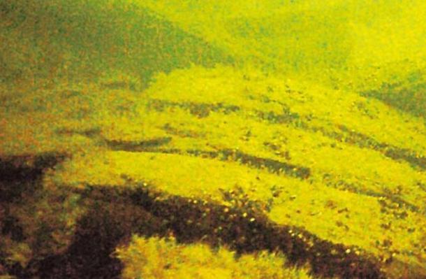 Naufragio-identificado-por-Rauno Koivusaari .jpg