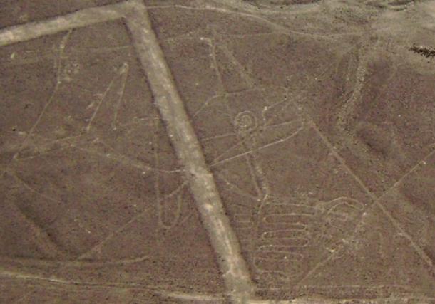 Líneas de Nazca, ballena
