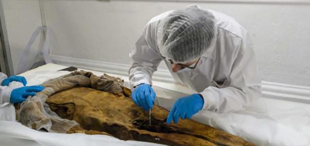 Philippe Charlier ha tomado muestras de piel para examinar en Europa. (John Guevara / EL TELÉGRAFO)