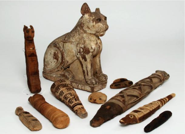 Varias momias de animales del antiguo Egipto.