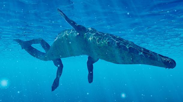 Un reciente avistamiento del monstruo marino de Ayia Napa lo describió como una criatura parecida a un cocodrilo. (Kaulitzki/ Adobe)