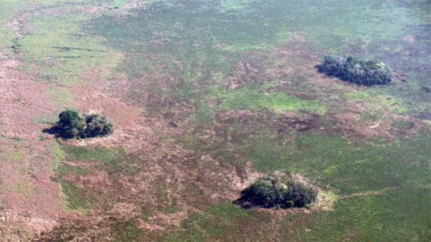Vista aérea de las islas forestales en la región amazónica de Bolivia. (Umberto Lombardo)