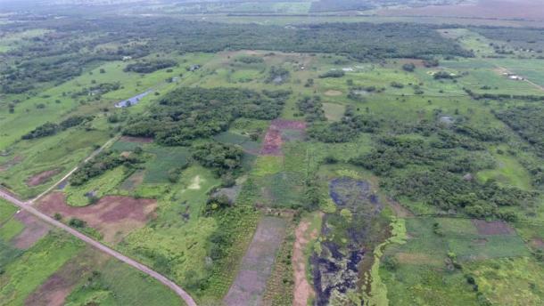 Vista aérea de Aguada Fénix. Calzadas y embalses en el frente y la meseta principal en la parte posterior. (Takeshi Inomata / Nature)