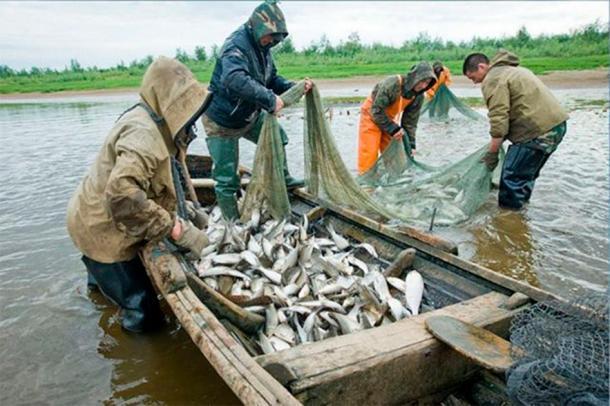 Los pueblos indígenas del río Amur están pescando salmón en los días modernos. (Imagen: AiF / The Siberian Times)