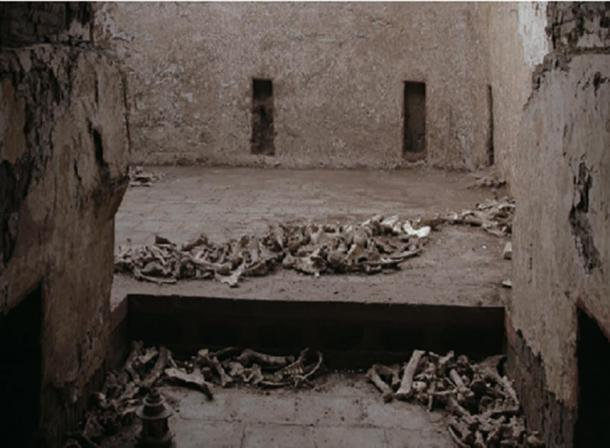 Huesos de animales encontrados en la tumba. (J. Yang / Antiquity Publications Ltd)