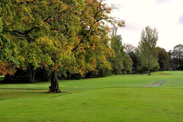 Árbol de hadas en Ormeau Golf Club en Belfast, Ormeau, Irlanda del Norte. (Albert Bridge / CC BY-SA 2.0)