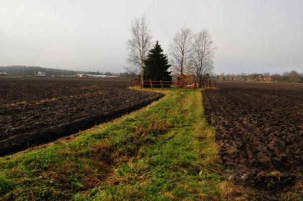 Área de Levänluhta Spring, en Isokyrö. Vesa Laulumaa 2012 (Uso Justo)