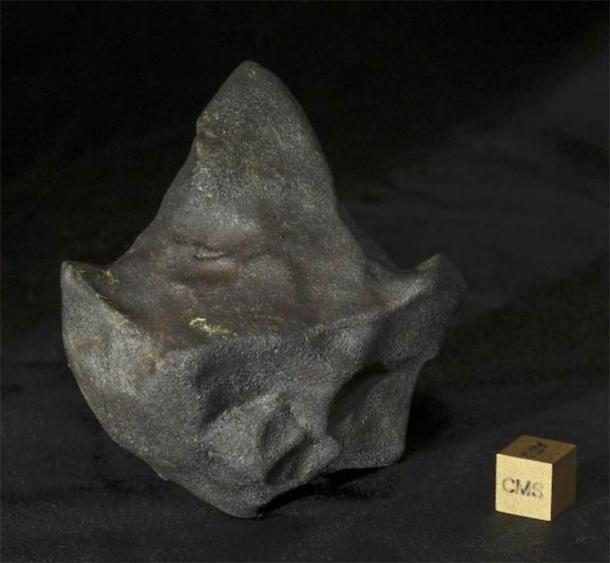 Un meteorito inusual en forma de punta de flecha de la caída de Aguas Zarcas. Esta muestra pertenece al coleccionista privado Michael Farmer. (Laurence Garvie / Centro de Estudios de Meteoritos, Universidad Estatal de Arizona)