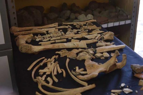 Los huesos descubiertos en Zultépec-Tecoaque muestran que mujeres y niños fueron asesinados y mutilados. (INAH)
