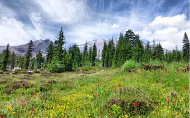 Panther Meadows - Monte Shasta © Dustin Naef