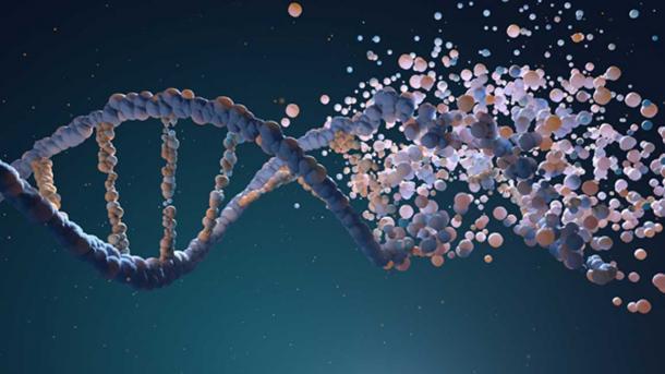 Cadena de ADN ensamblada a partir de diferentes elementos. (Tatiana Shepeleva/ Adobe)