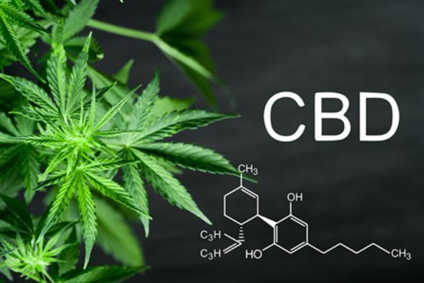 Cannabidiol, CBD, es de toda la planta de cannabis. (cendeced / Adobe Stock)
