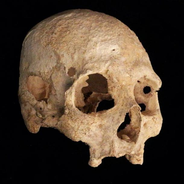 Primer plano del cráneo encontrado en la cueva del cenote Chan Hol. (Jerónimo Avilés Olguín / Universidad de Heidelberg)