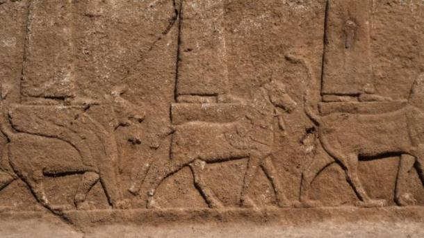 Cerca de los tallados en relieve asirios que muestran a algunos de los dioses y diosas de pie o sentados en una criatura mítica. (Alberto Savioli / Proyecto Arqueológico de la Tierra de Nínive / Universidad de Udine)