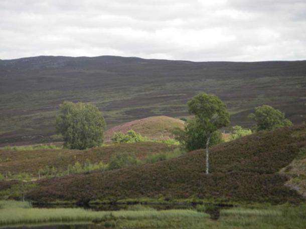 Un hombre se enfermó después de dañar una colina de hadas, como la que se muestra en la foto (CC by SA 2.0)