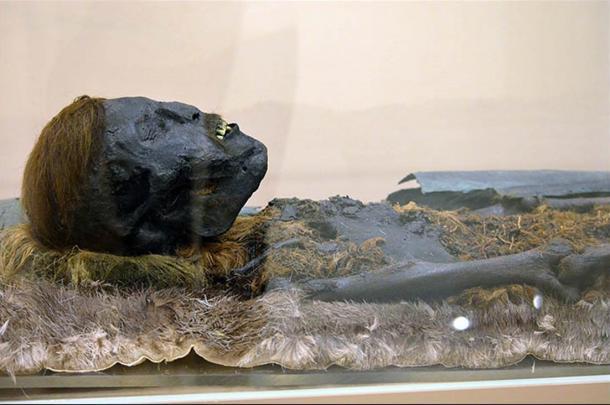 Se encontraron cinco momias envueltas en cobre, y también cubiertas minuciosamente con piel de reno, castor, carcayú u oso.