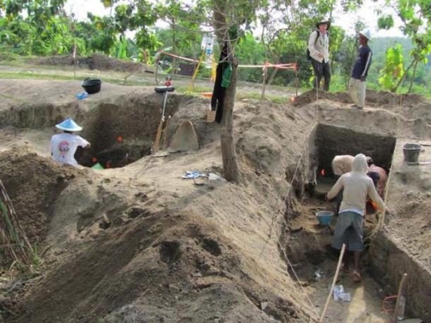 Excavaciones en curso en Ngandong en 2010. (Copyright Russell L. Ciochon)