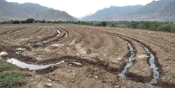 Las personas que amenazan a Ruth Shady y el sitio Caral-Chupacigarro están motivadas por la codicia, ya que los precios de la tierra en el área aumentaron en un 1000 por ciento en los últimos 10 años. (Zona Caral)