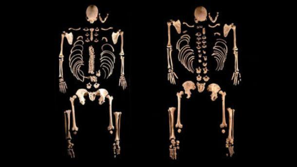 Estos dos esqueletos en La Braña, en el noroeste de España, pertenecían a hermanos con cabello oscuro y ojos azules que vivían hace 8000 años y estaban más estrechamente relacionados con los cazadores-recolectores en Europa Central. (Julio Manuel Vida Encinas)