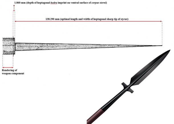 En la izquierda - Dibujo de la estirita de siete puntas que mató al hombre antiguo. A la derecha - cerca de la lanza styrax. (Anagnostis Agelarakis / CC BY-SA 4.0)