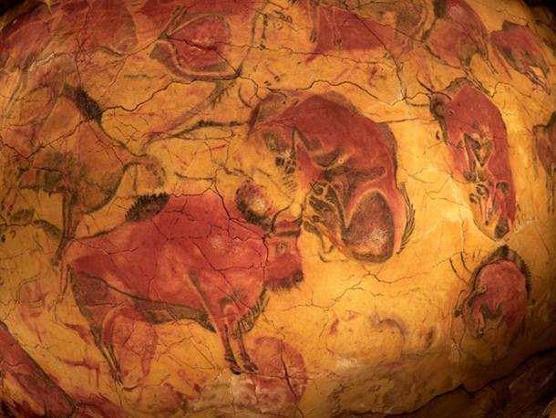 Dibujos del techo de la cueva de Altamira en España, bisontes y leones son considerados matriarcales. (bereta/ adobe)