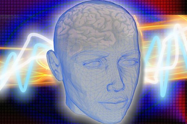 Es posible que los primeros humanos hayan necesitado engordar para alimentar cerebros hambrientos y en crecimiento. (CC0)